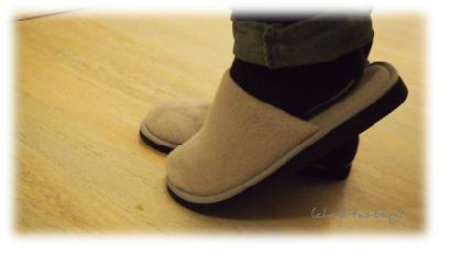 Zimt Pantoffeln vom Purvida Natur-Produkte-Versand