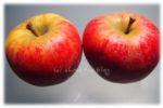zum Teilen viel zu schade: Rubens® von Elbe-Obst