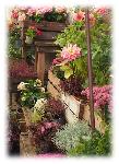 Lass Dich vom balkonliebe Magazin inspirieren