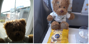bloggi im Flugzeug nach Belrin