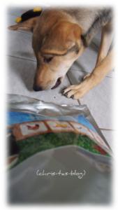 Charity for Dog - Premium Hundefutter