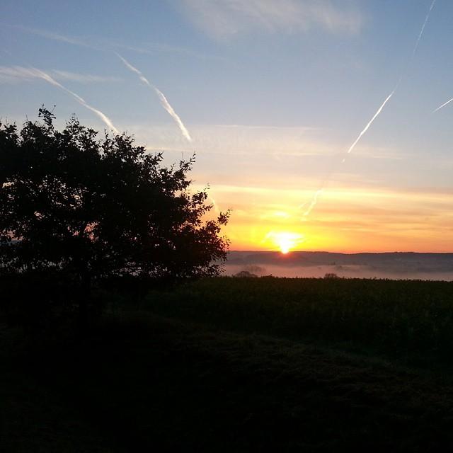 Gooood morning... #instalike #instaphoto #like4like #naturepic #nature #sunset