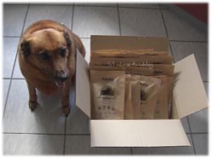 Meine Hündin mit Hunderfutter-Paket