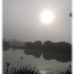 Weiher im Morgennebel