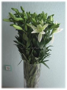 Lilien in XXL in Bodenvase