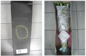 XL Lilien wunderschön verpackt