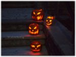 Halloween – nur noch 2 Tage dann ist die Nacht der Nächte…