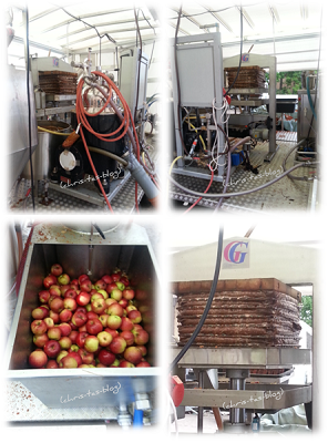 mobile Apfelpresse für Apfelsaft